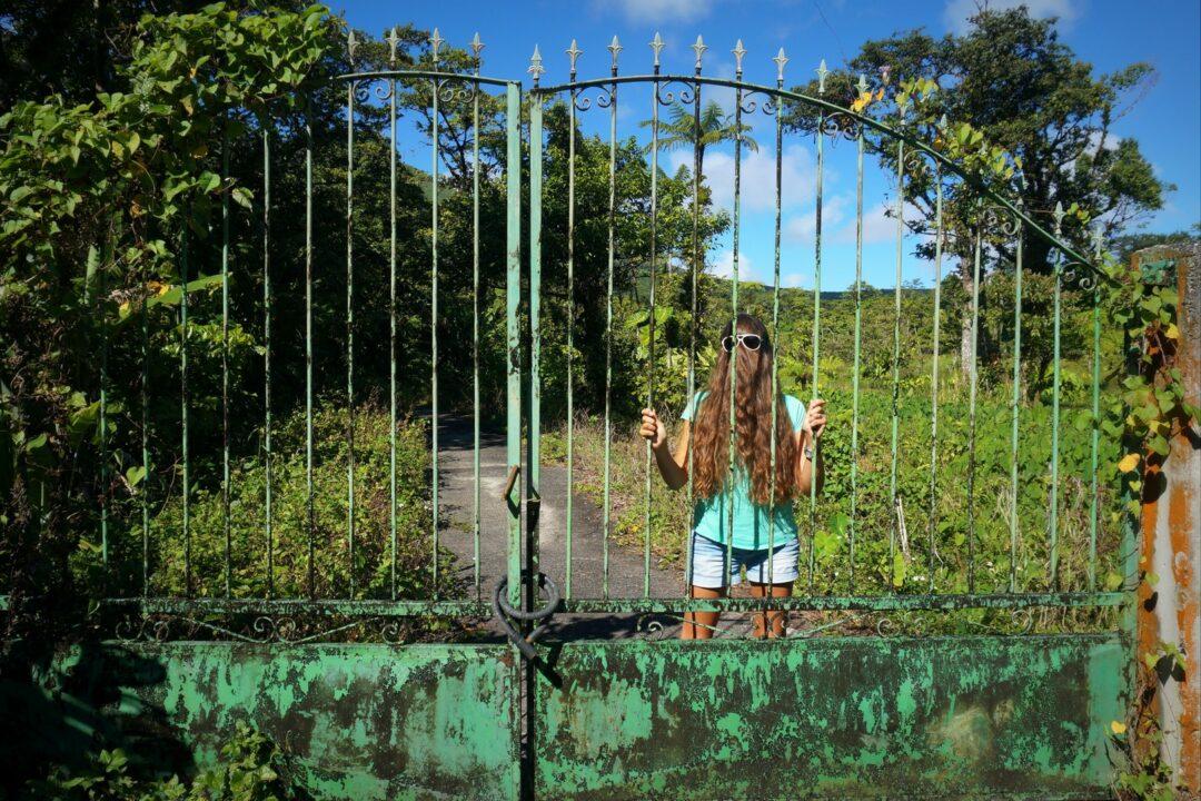 L'indomptable Choubaka en cage