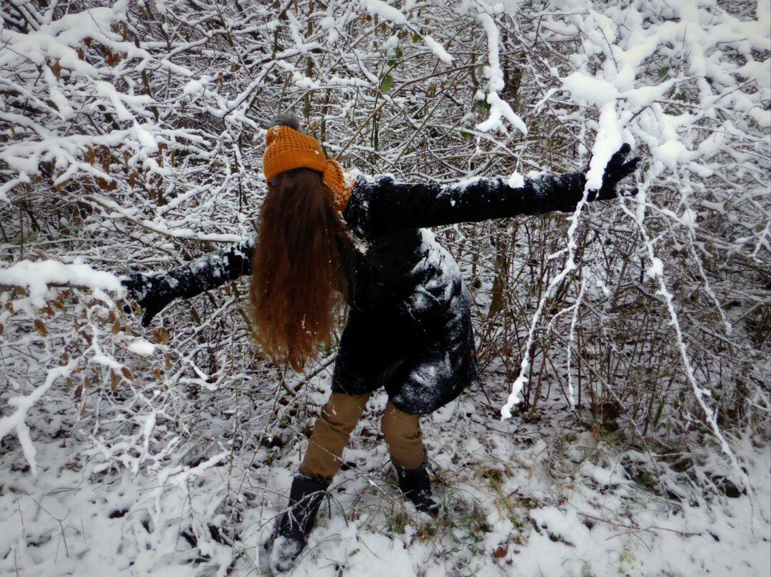 Choubaka des neiges dans les fôrets de Lorraine