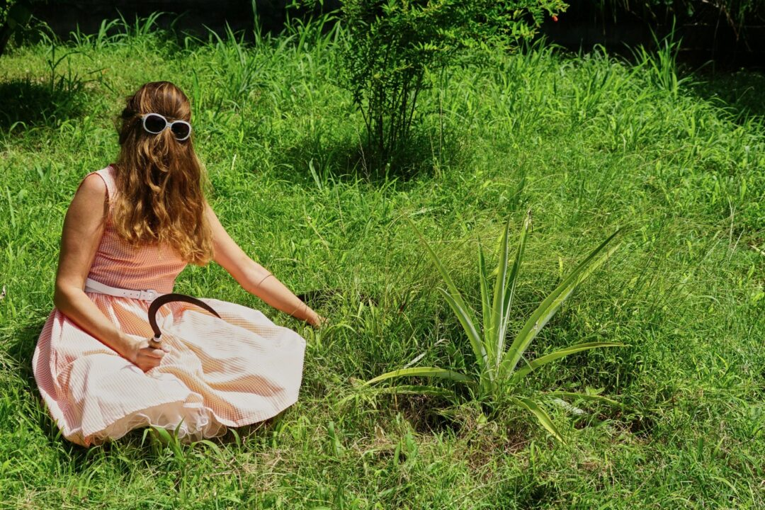 Choubaka désherbe le jardin