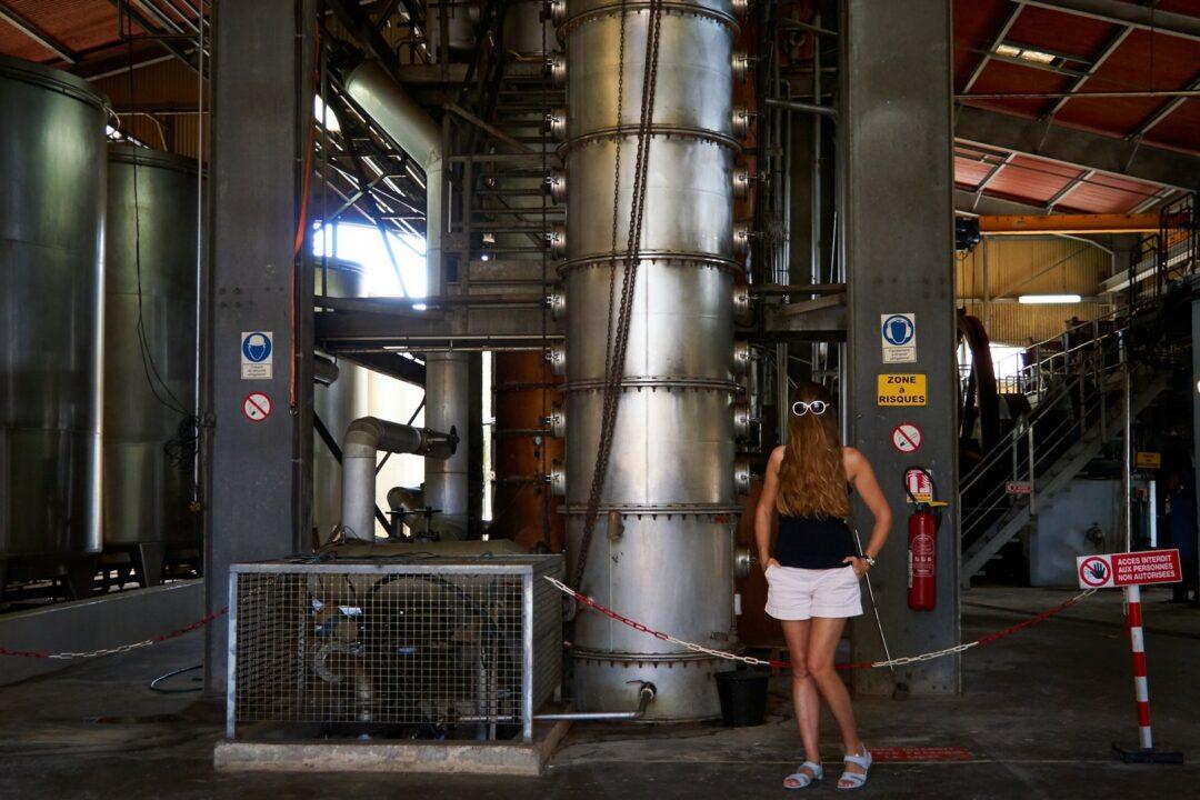 Choubaka à la distillerie Bellevue